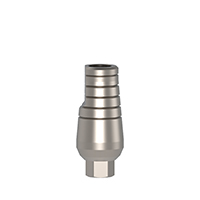 4970252 Straight Cemented Abutments Standard Cementing Post, 10 mm, AGM-101