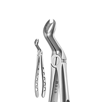 8250061 X-Trac Forceps Upper 3 Right Molar, 3 Prong, 6718